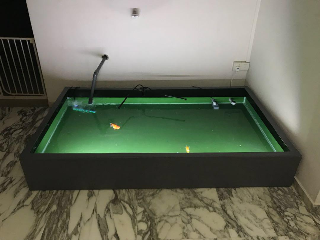 Custom made FGT Fibre tank for sale, Pet Supplies, For Fish