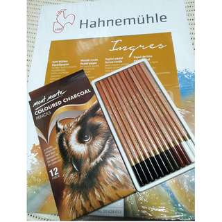TAKE ALL: Hahnemule Ingres Pastel Pad and Mont Marte Colored Charcoal Pencils