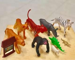 Koleksi haiwan