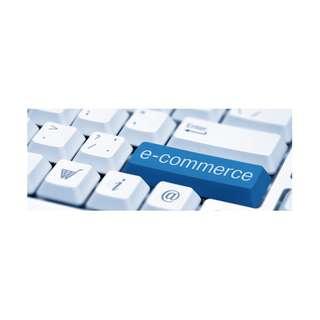 E - Commerce Assistant