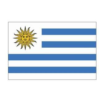 Uruguay Flag (14x21cm)