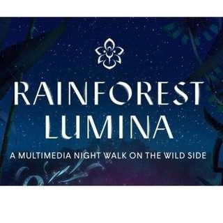 Rainforest Lumina at Singapore Zoo (fixed date)