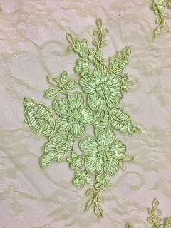 Embroidered Lace (mint green)