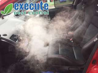 Cockroach and Ants Car Fumigation