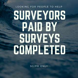 Looking for Surveyors