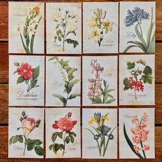 Vintage Flower Stickers (SET A)