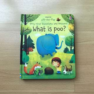 Usborne Very First Question - What is Poo?
