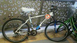 Spoilt Bike