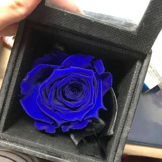 Forever flower gift
