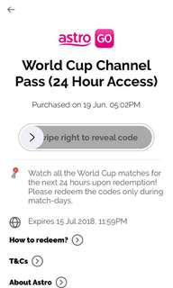 Astro World Cup final access pass 24 hours