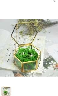 Wedding glass ring/jewellery box (gold)