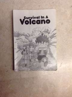 Survival in the volcano