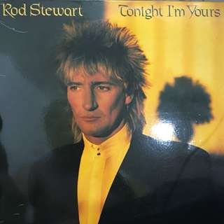 Rod Stewart vinyl record Lp