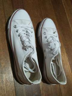 White Converse All-Star (Barely Used)