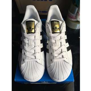 adidas superstar 金標貝殼頭