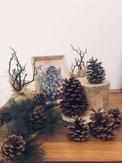 Rustic Pines Display props