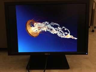 Dell Monitor E1909W