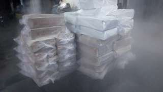 Direct supplier of Frozen fish