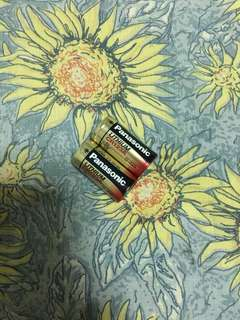 2 Panasonic CR123A Batteries