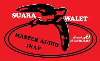 Master Suara Burung Walet Inap