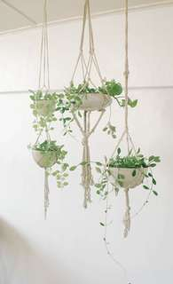Macrame Hanger with Ceramic Planter (handmade)