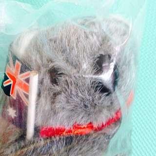 🆕Australia Koala