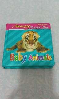 Mind to Mind Amazing Baby Animals book