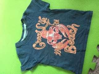 Shirt Gingersnaps