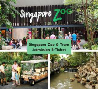 Singapore Zoo + Tram Open Date Admission Eticket
