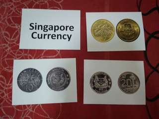 Singapore currency - BN Glenn Doman and Shichida Flashcards