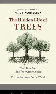 The Hidden Life of Trees: What They Feel, How They Communicate - Discoveries from a Secret World by Peter Wohlleben