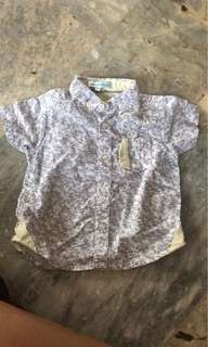gingersnap polo 3m - 9m