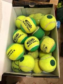 30 green dot tennis balls