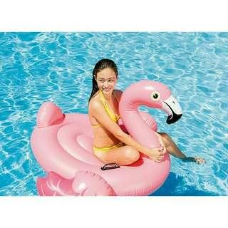 Pelampung flamingo