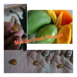 Batu mustika buah mangga