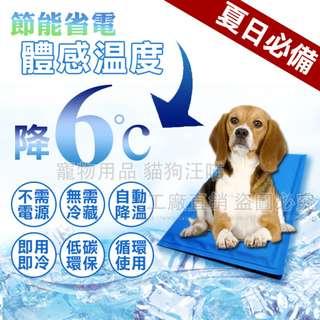 冰墊M號 寵物冰墊 人寵降溫 筆電散熱 涼墊 寵物冰墊 降溫 散熱 狗窩 貓床 夏季 涼感 寵物用品 大量現貨 清涼