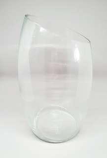 Tall Glass Vase for Terrarium