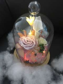 Fantastic (white)-preserved rose