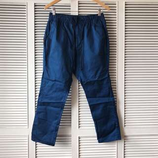 Nike Men's Blue Pants