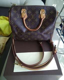 LV speedy monogram B25