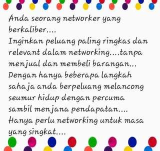 Mencari Leader untuk networking