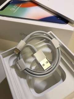 Apple iPhone cable