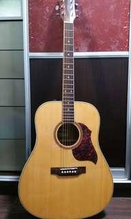 Tonedrive acoustic guitar