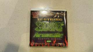 Ernie Ball 2153 12-String Acoustic Guitar String
