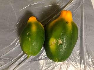 新界自種有機木瓜