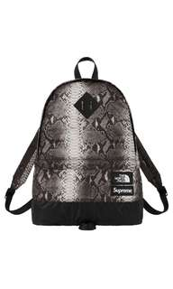 Supreme North Face Snakeskin backpack