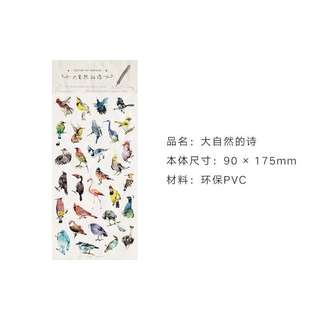Bird Stickers