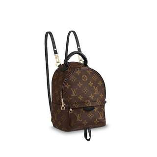 LV Palm spring mini backpack with full set