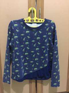 Dinosaur Sweater Gaudi