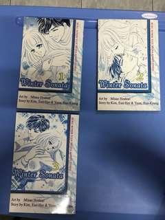 Winter Sonata Comic